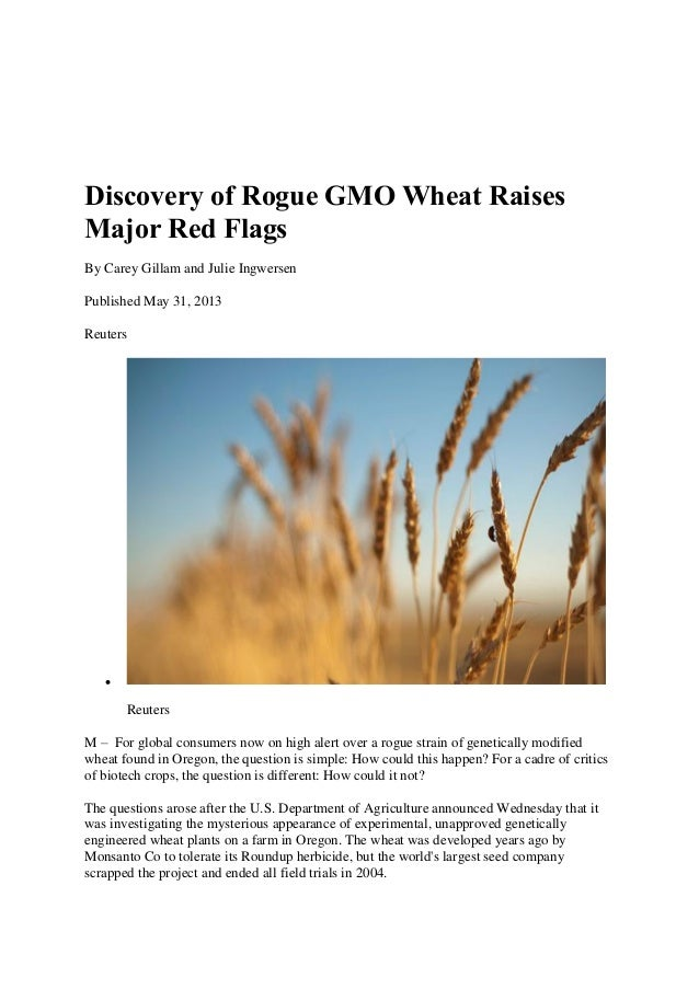 Discovery of Rogue GMO Wheat RaisesMajor Red FlagsBy Carey Gillam and Julie IngwersenPublished May 31, 2013ReutersReuters...