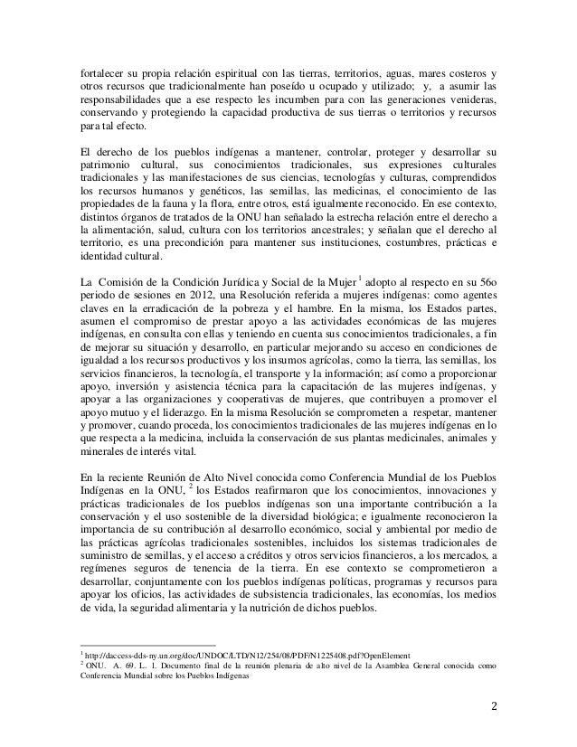 Discurso Myrna Cunningham - Seminario Internacional Pueblos Indígenas Slide 2