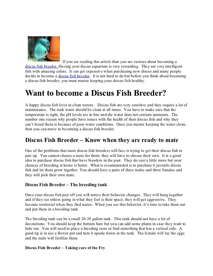 If you are reading this article than you are curious about becoming adiscus fish breeder. Having your discus aquarium is v...