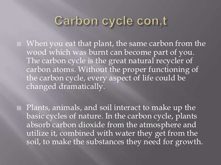 The importance of the carbon cycle for Words to describe soil