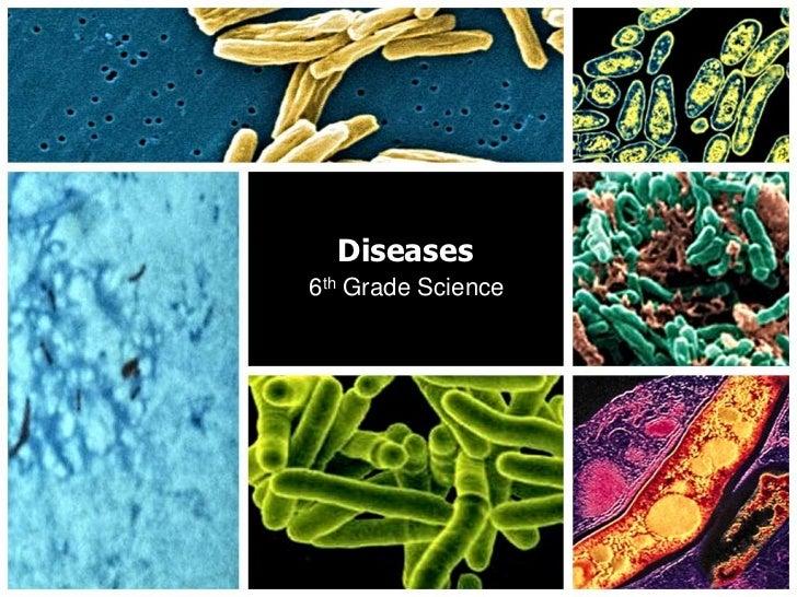Diseases<br />6th Grade Science<br />