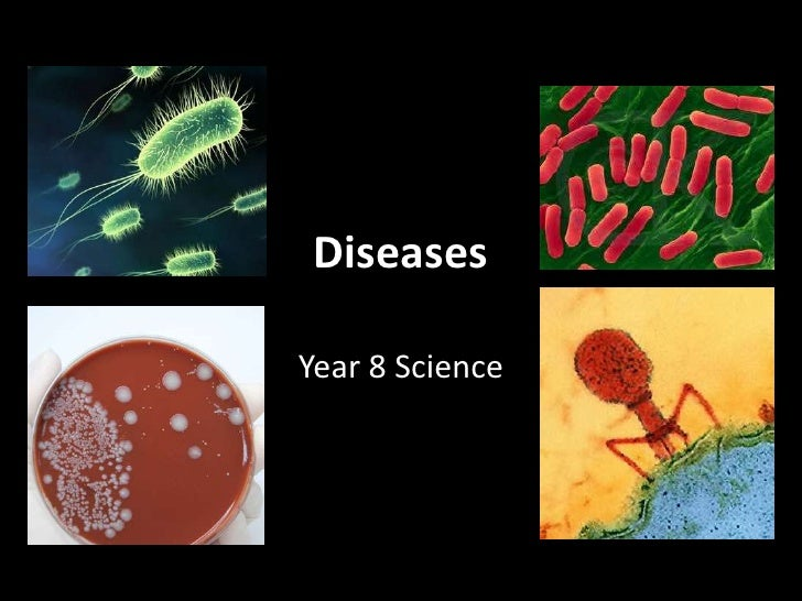 Diseases<br />Year 8 Science<br />