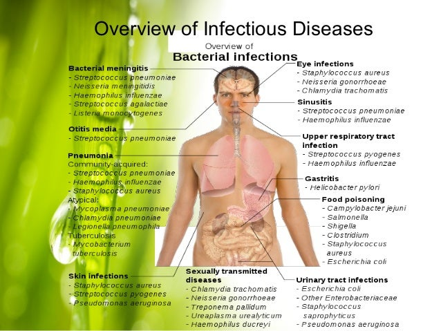 overview of pathogens and disease Infectious diseases: who health topic page on infectious diseases provides links to descriptions of infectious diseases activities, reports, news and events, as well.