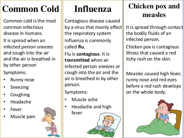 a research on the contagious disease influenza Canine influenza, or dog flu, is a highly contagious disease that is on the rise in the united states infections can occur any time of year read this to learn more about signs and symptoms, prevention, treatment, advice, and prognoses.