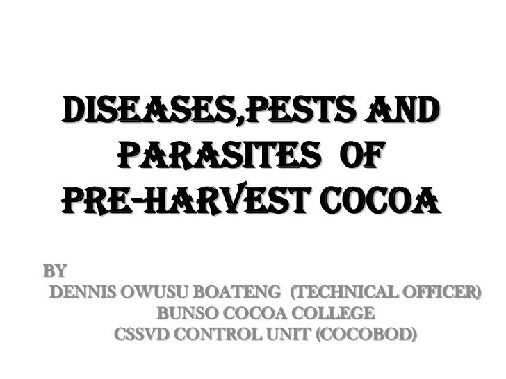 DISEASES,PESTS AND PARASITES  OF  PRE-HARVEST COCOA<br />BY<br />DENNIS OWUSU BOATENG  (TECHNICAL OFFICER)<br />BUNSO COCO...
