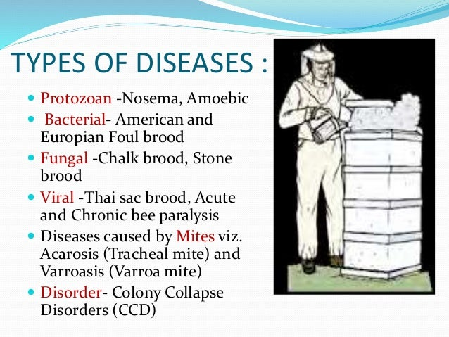 diseases of honey bees ppt