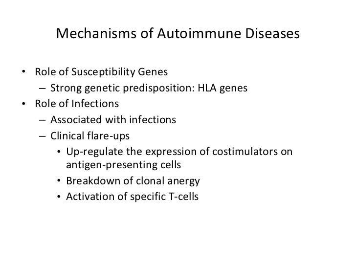Mechanisms of Autoimmune Diseases <ul><li>Role of Susceptibility Genes </li></ul><ul><ul><li>Strong genetic predisposition...