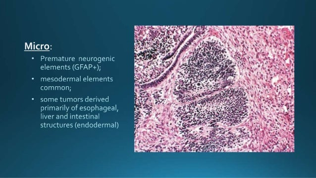 epub Cervagem: A new prostaglandin in
