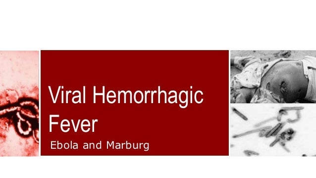 "ebola hemorrhagic fever ebola hf essay Dr piot christened the deadly virus which generates hemorrhagic fever ""ebola  cdc (2014, december 01) marburg hemorrhagic fever (marburg hf  old essay."