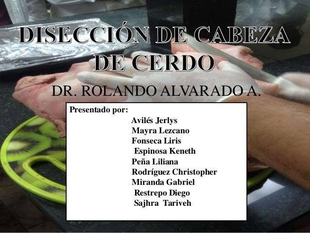 DR. ROLANDO ALVARADO A. Presentado por: Avilés Jerlys Mayra Lezcano Fonseca Liris Espinosa Keneth Peña Liliana Rodríguez C...