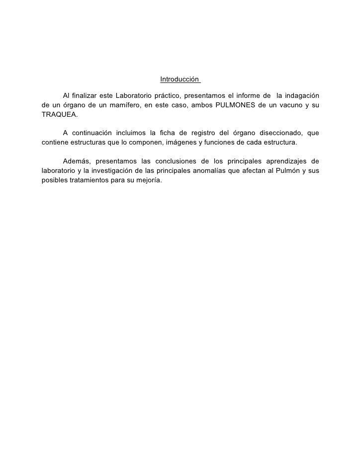Fantástico Hoja De Cálculo Respuestas Vaca Ojo De Disección Molde ...