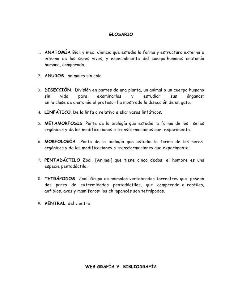 Diseccion De La Rana