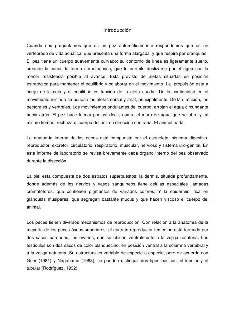 Contemporáneo Arco Iris De La Anatomía De La Trucha Imagen ...
