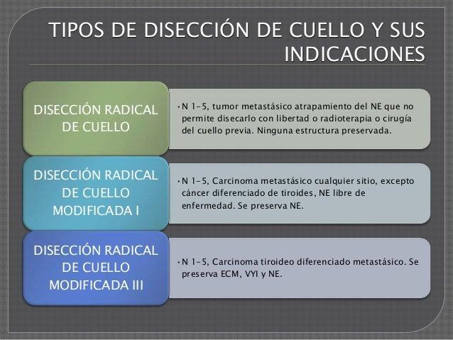 DISECCION RADICAL DE CUELLO PDF DOWNLOAD