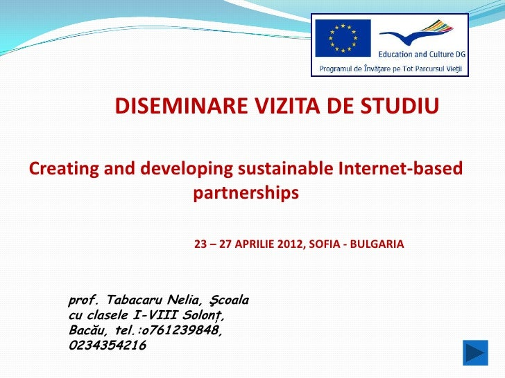 DISEMINARE VIZITA DE STUDIUCreating and developing sustainable Internet-based                   partnerships              ...