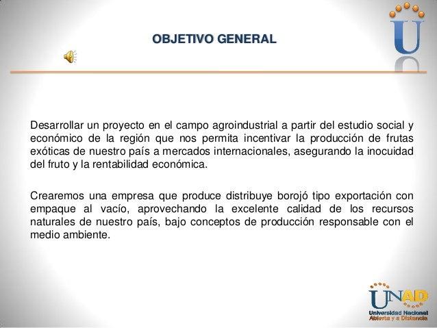 OBJETIVO GENERAL  Desarrollar un proyecto en el campo agroindustrial a partir del estudio social y económico de la región ...