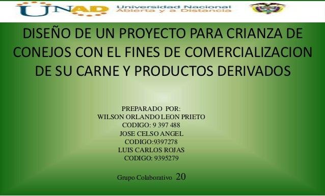 DISEÑO DE UN PROYECTO PARA CRIANZA DECONEJOS CON EL FINES DE COMERCIALIZACION   DE SU CARNE Y PRODUCTOS DERIVADOS         ...