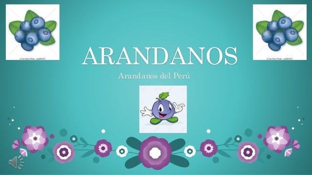 ARANDANOS Arandanos del Perú