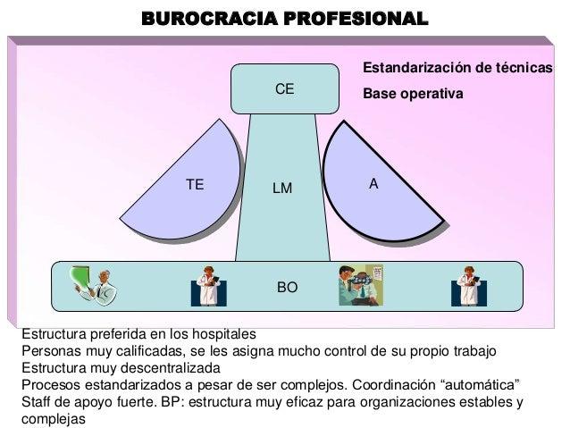 Diseño Organizacional Insn Sb