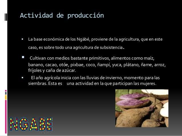Actividad de producción  La base económica de los Ngäbé, proviene de la agricultura, que en este caso, es sobre todo una ...