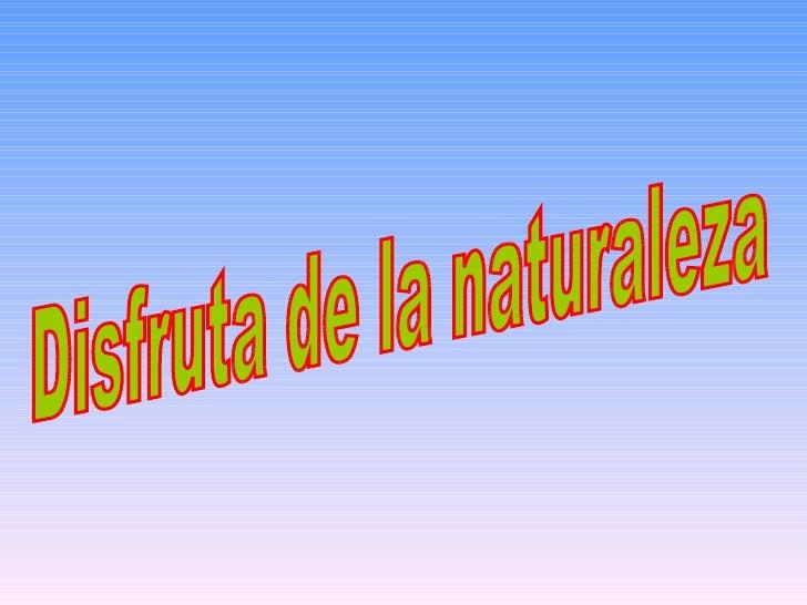 Disfruta de la naturaleza