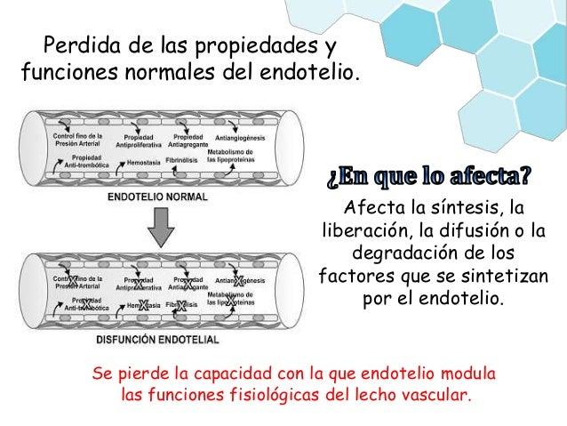 disfunción endotelial en diabetes mellitus