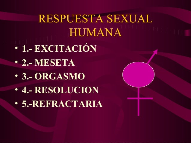 Fase refractaria sexual