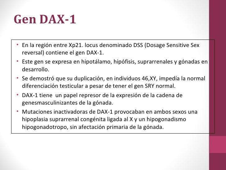 dosage-sensitive sex reversal in Dallas