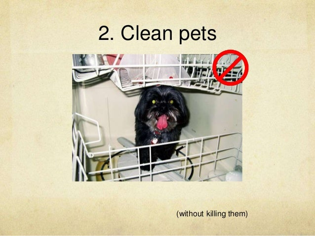 2. Clean pets (without killing them)
