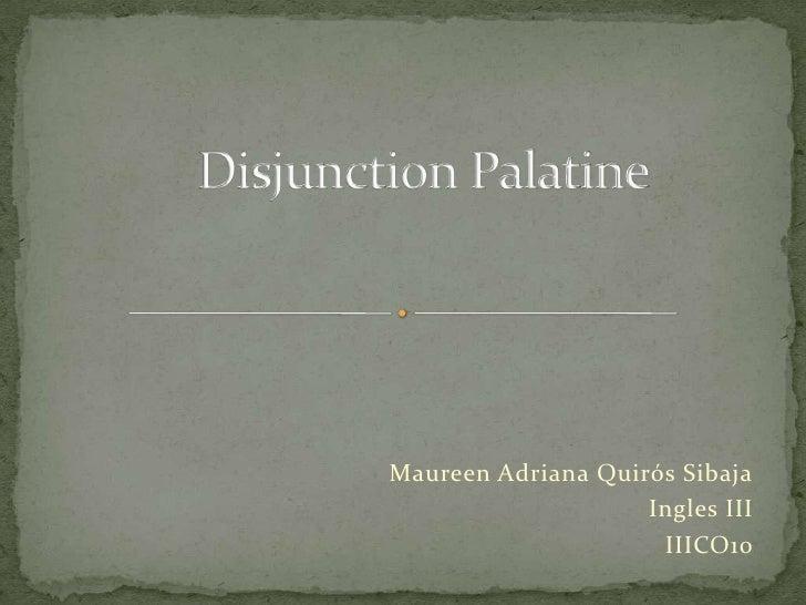 DisjunctionPalatine<br />Maureen Adriana Quirós Sibaja<br />Ingles III<br />IIICO10 <br />