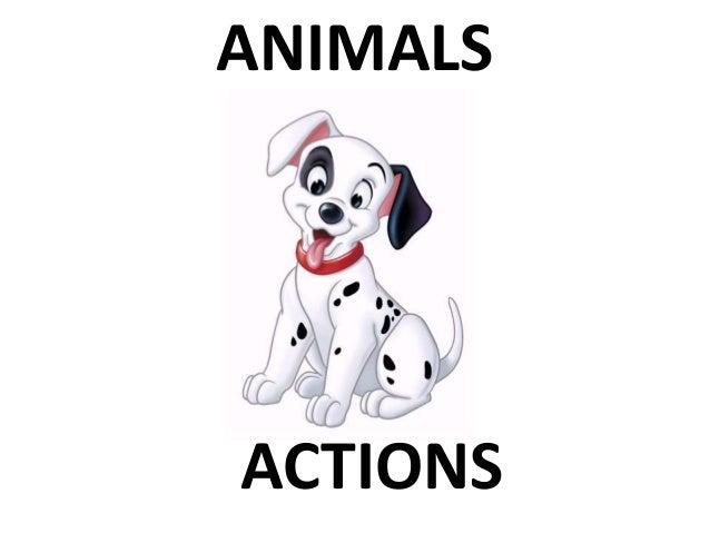 ANIMALS ACTIONS
