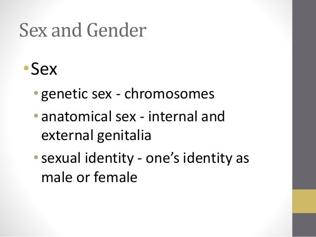 biointeractive meaning sex genes and gender