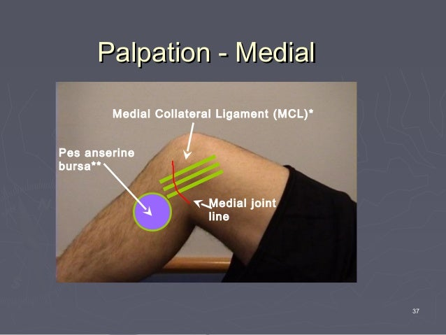 Disorders Of Lower Limb