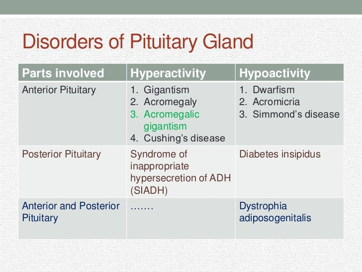 Anterior pituitary besides 9318387 also Endocrine Response Presentation as well 2 Body Response To Stress Presentation in addition Disorders Of Pituitary Gland 7815739. on pituitary gland slide