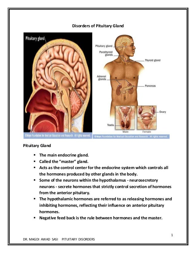 Disorders Of Pituitary Gland The Master By Msi