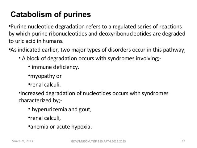 disorder of purine metabolism pdf