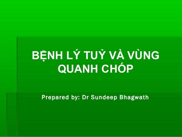 BỆNH LÝ TUỶ VÀ VÙNG   QUANH CHÓP Prepared by: Dr Sundeep Bhagwath
