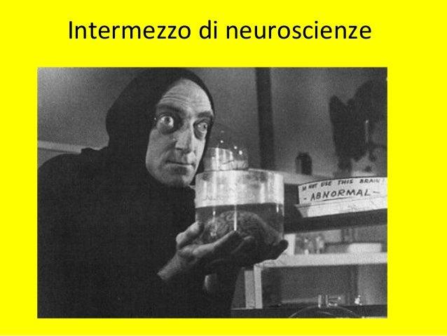 NEUROBIOLOGIANEUROBIOLOGIA • Genetica • Anatomia • Neurochimica (neurotrasmettitori)