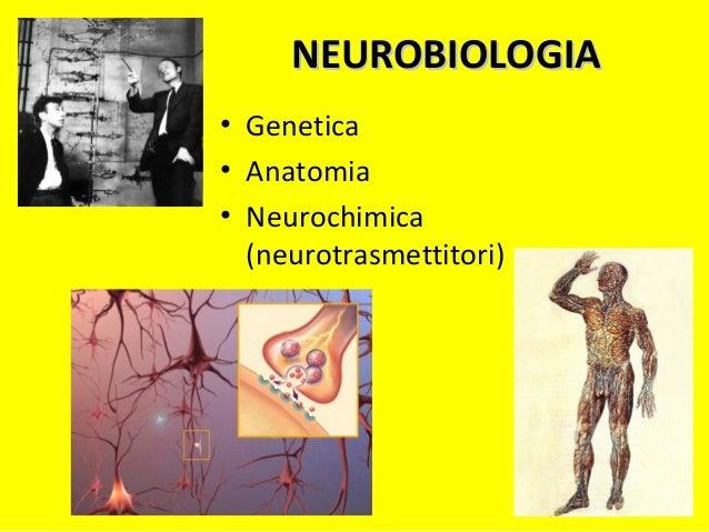 GENETICAGENETICA • Genoma • Cromosomi • Gene • Locus