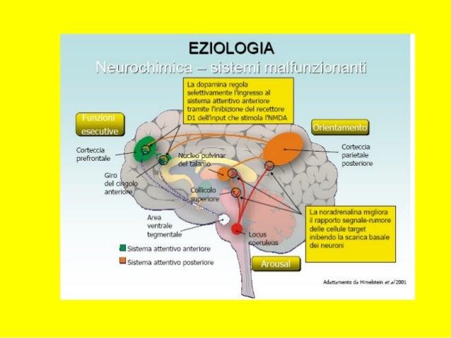 DECORSO DEL DISTURBODECORSO DEL DISTURBO Psicopatologia dello sviluppoPsicopatologia dello sviluppo BAMBINI DI SCUOLA ELEM...