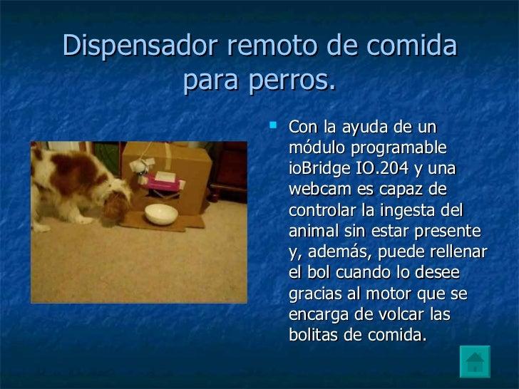 Dispensador de comida for Dispensador de comida para perros