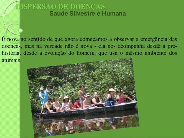 DISPERSAO DE DOENÇAS Saúde Silvestre e Humana  É nova no sentido de que agora começamos a observar a emergência das doença...