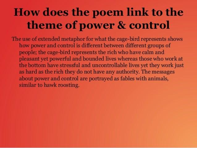 hawk roosting theme essay
