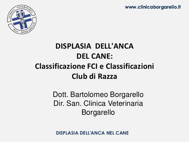 www.clinicaborgarello.it      DISPLASIA DELLANCA             DEL CANE:Classificazione FCI e Classificazioni            Clu...
