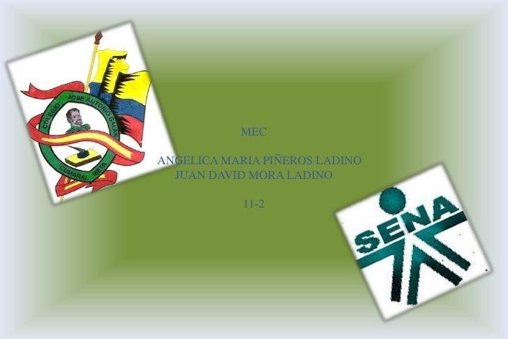 MEC<br />    ANGELICA MARIA PIÑEROS LADINO<br />JUAN DAVID MORA LADINO<br />11-2<br />