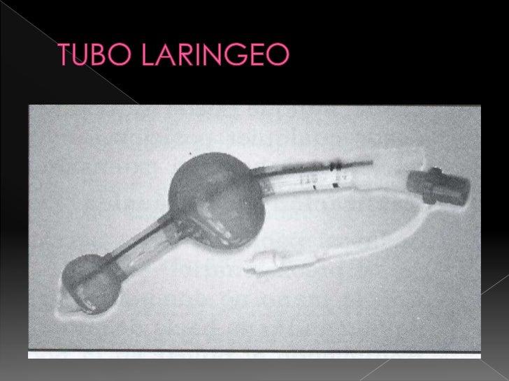 TUBO LARINGEO<br />