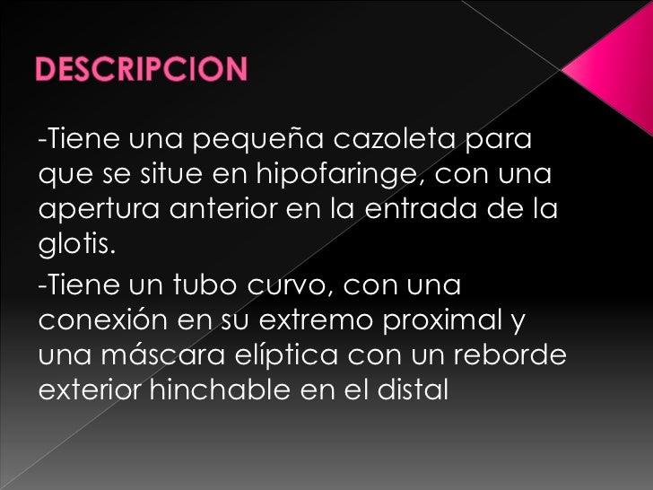 DESCRIPCION<br />-Tiene una pequeña cazoleta para que se situe en hipofaringe, con una apertura anterior en la entrada de ...