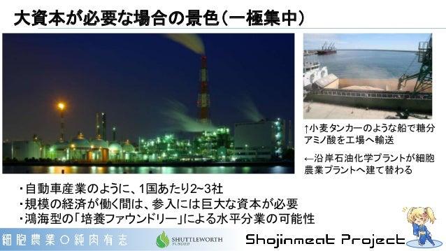 大資本が必要な場合の景色(一極集中) ・自動車産業のように、1国あたり2~3社 ・規模の経済が働く間は、参入には巨大な資本が必要 ・鴻海型の「培養ファウンドリー」による水平分業の可能性 ↑小麦タンカーのような船で糖分 アミノ酸を工場へ輸送 ←沿...