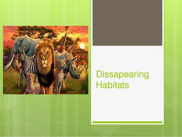 Dissapearing Habitats