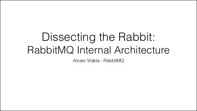 Dissecting the Rabbit: RabbitMQ Internal Architecture Alvaro Videla - RabbitMQ